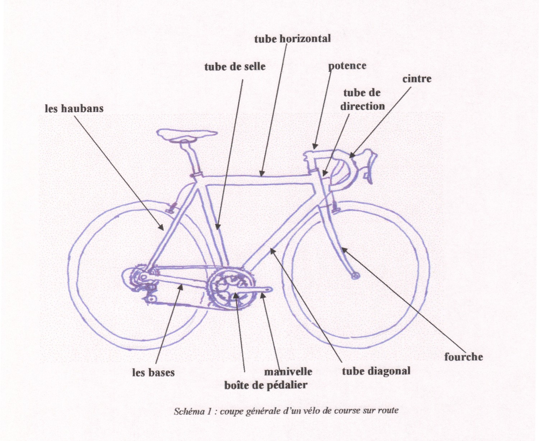 Dessin Descriptif D Un Vélo De Course Site Velofcourse